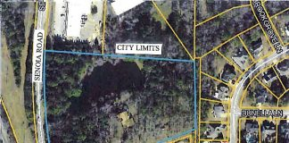 Outlined area is proposed Senoia Road rezoning. Graphic/Peachtree City.