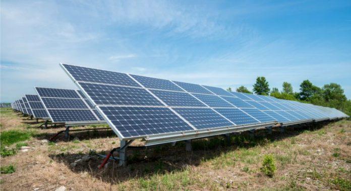 Solar panel array in field. Photo/Shutterstock.
