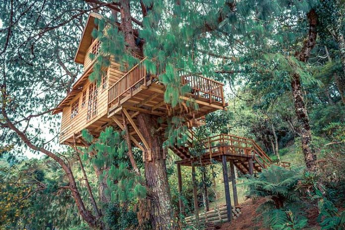 A Shutterstock photo shows a two-story treehouse, location not given.