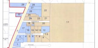 East 54 annexation parcels under consideration. Graphic/Peachtree City.