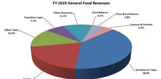 Graph of sources of Peachtree City revenues expected for Fiscal Year 2019. Source/Peachtree City.