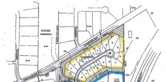 Map of proposed Bradshaw annexation and development. Graphic/Peachtree City.