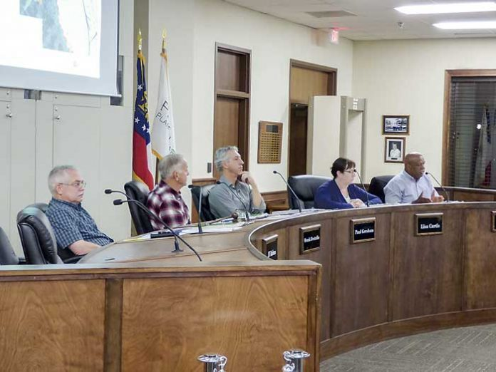 Peachtree City Planning Commission. Photo/Ben Nelms.