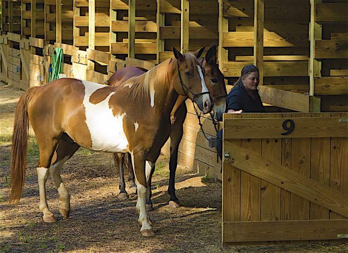 Public stables at A.H. Stephens State Park near Augusta. Photo/Ga. State Parks website.