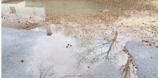 Stock photo of flooded yard. Photo/Shutterstock.
