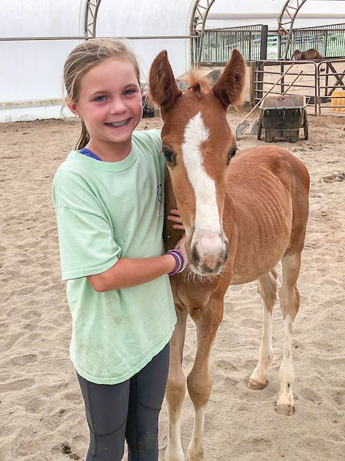 Ten-year-old Coweta County volunteer Ila Pass spends time with a nurse mare foal at the Flying Change farm in Fairburn. Photo/Submitted.