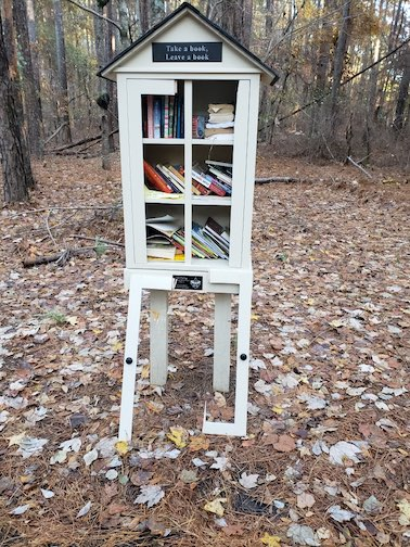 Scout's photo shows damage to mini-library.