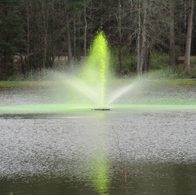 The fountain in the lake at Shamrock Park turned green for St. Patrick's Day in 2019. The town is hosting its annual St. Patrick's Day Celebration at Shamrock Park on Senoia Road on Saturday, March 14. Photo/Submitted.