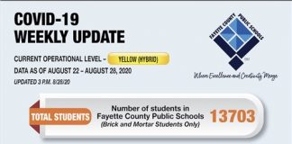 Graphic provided by the Fayette County School System.